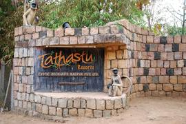 Tathastu: A rustic retreat near a jungle