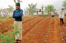 Gujarat's blueprint for farm sector