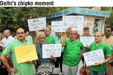 Delhi's chipko moment