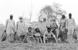 Being landless in Punjab